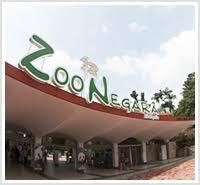 Zoo Negara price